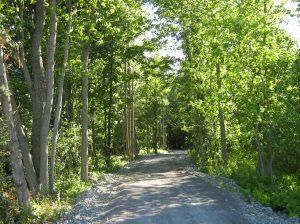 mctavish-trail-photo-50pecent